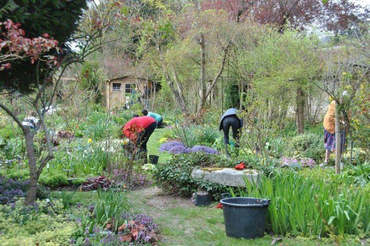 Jardin privé d'André Ève. Les membres de l'Association en plein boulot. ©Malorie Hicorne
