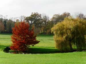 Segrez : arboretum