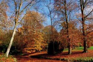 arboretum de Segrez - Hortus Focus