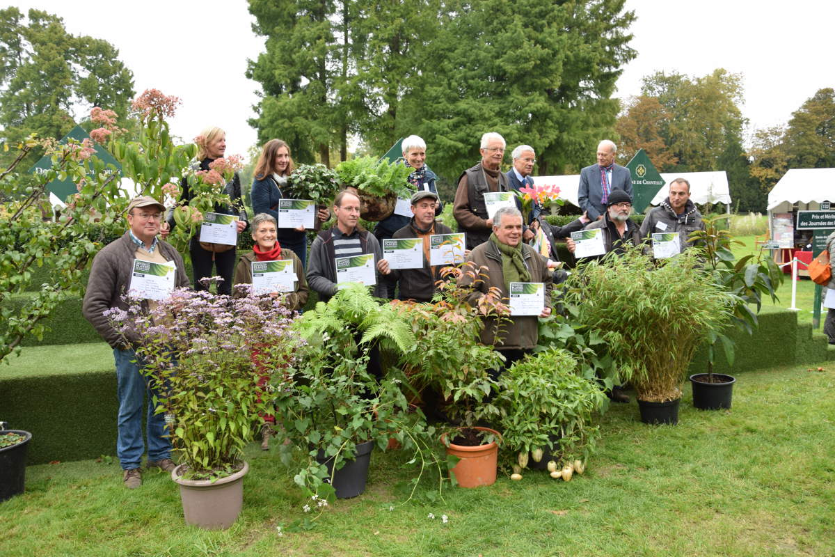 Lauréats Chantilly automne 2016