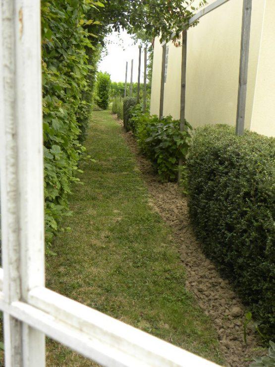 nathalie-beaucoujareix-plantation-sur-le-cote-de-la-maison