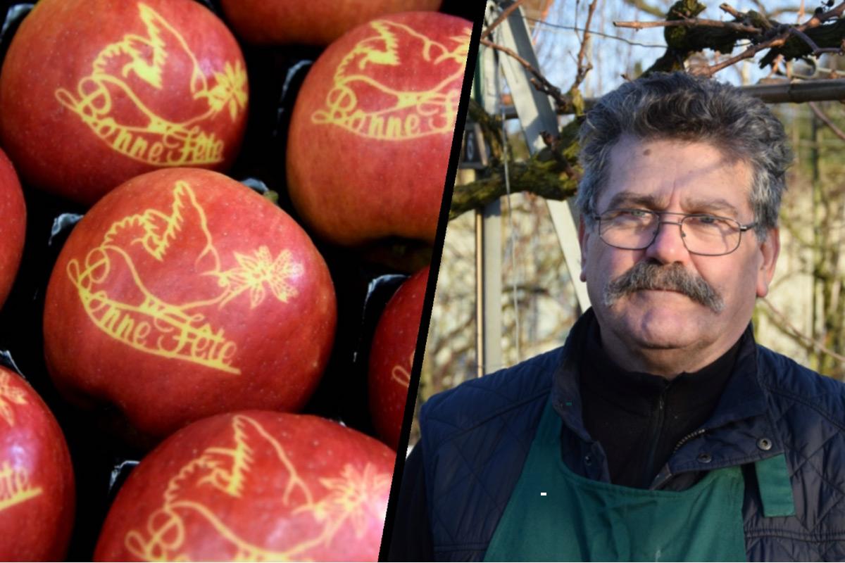 Pomme marquée / Bernard Guicheteau
