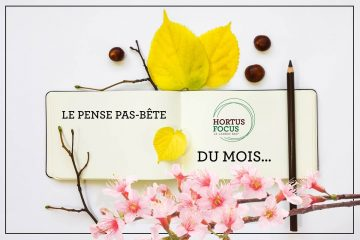 Pense pas bête du mois d'Hortus Focus