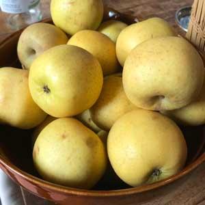 Pommes Belchard