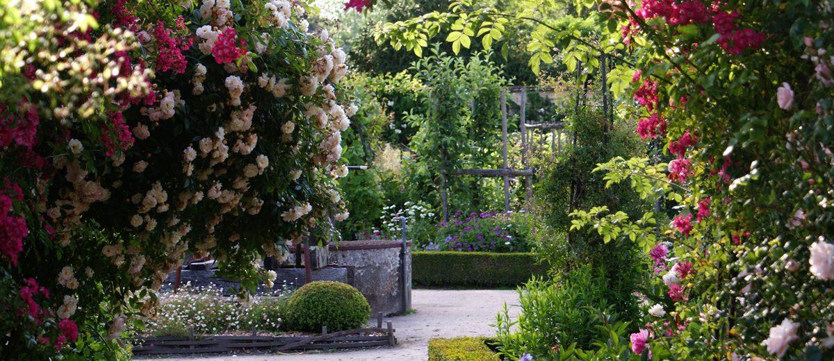 Puits et roses - jardin du Chateau de la Bussière