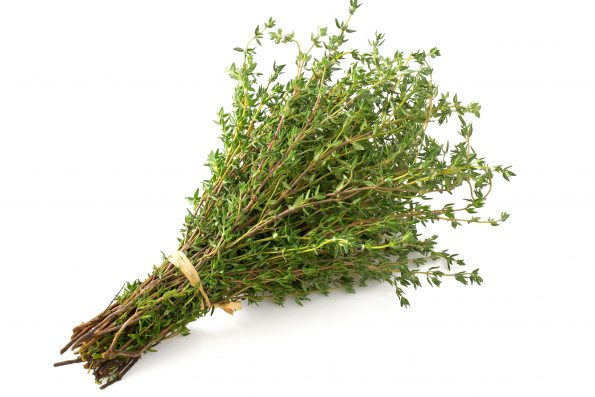 plante aromatique : thym