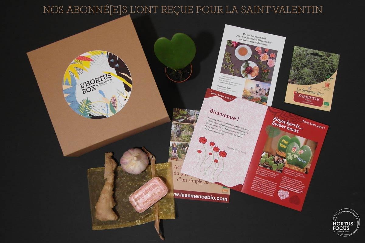 Découvrez l'Hortus Box de la Saint-Valentin
