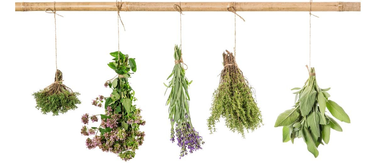 Bouquets de plantes aromatiques suspendus