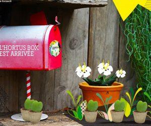 L'Hortus Box de la Saint-Valentin est arrivée