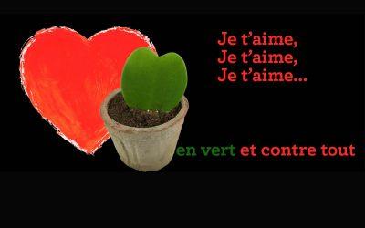 Commandez l'Hortus Box de la Saint-Valentin