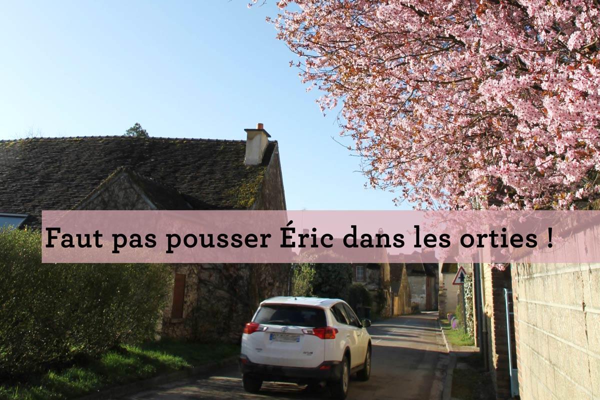 Cerisier dans un village