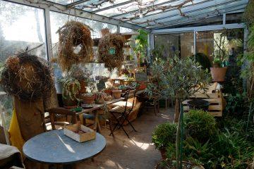 Le jardin de Marie-Ange