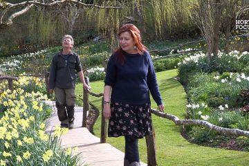 Monique et Thierry Dronet dans leur jardin