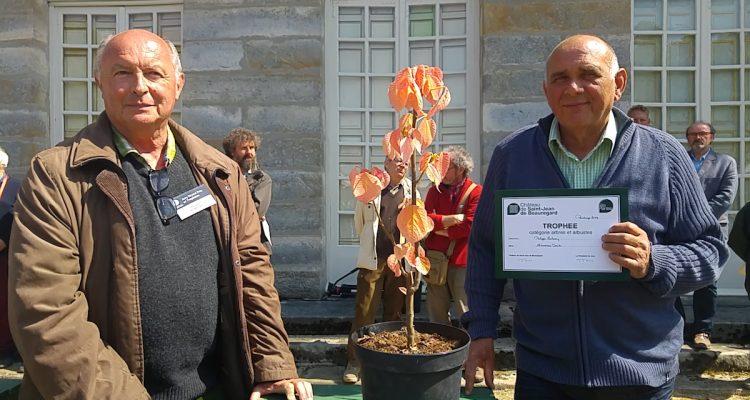 Trophées arbres et arbustes