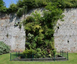 Mur végétalisé de Patrick Blanc