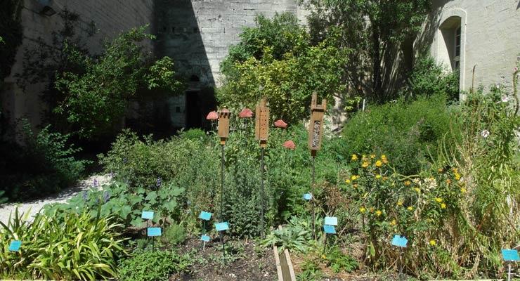 jardin-2