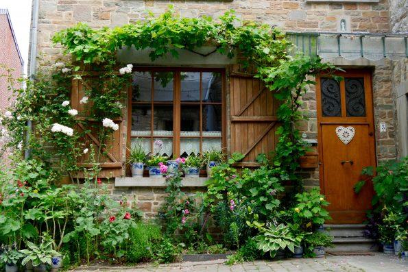Jardin aux miroirs de fran oise dardenne hortus focus i mag - Rose tremiere en pot ...