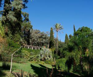 Domaine du Rayol, jardin des Méditerranées