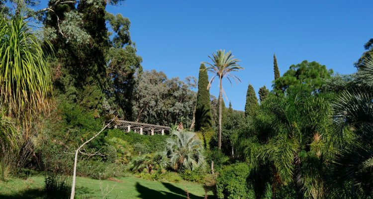 Au rayol le jardin des m diterran es hortus focus i mag - Domaine du rayol le jardin des mediterranees ...