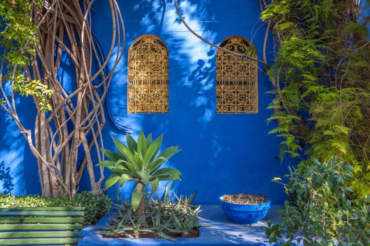 Le Jardin Majorelle Est Orphelin Hortus Focus I Mag