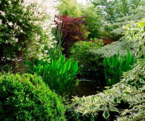 Normandie : Domaine Albizia - Hortus focus