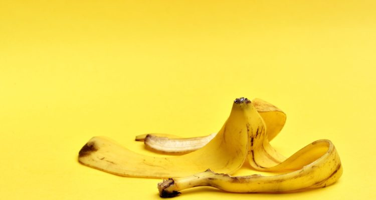 les exotique banane palme! Met un morceau de vacances dans le jardin