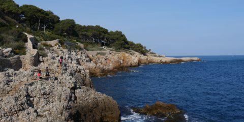 sentier de Tire-Poil, cap d'Antibes - Hortus Focus