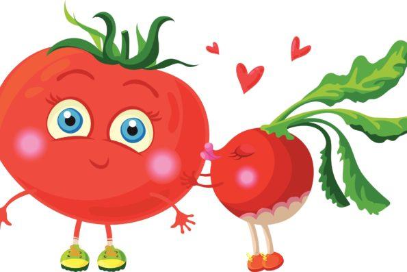 Tomate et radis
