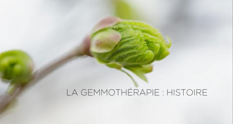 article sur l'histoire de la gemothérapie