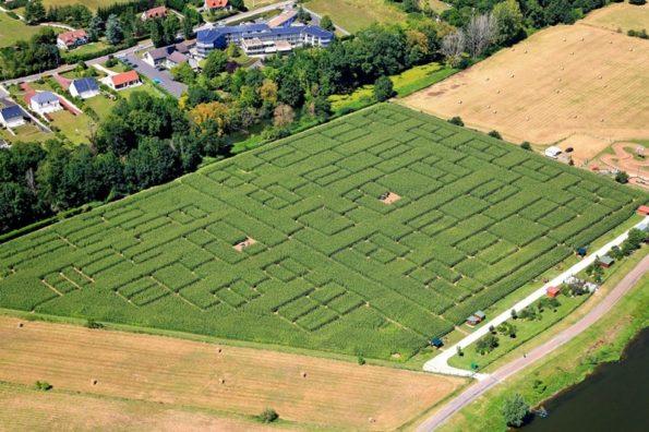 Les labyrinthes végétaux partout en France : Beaugency