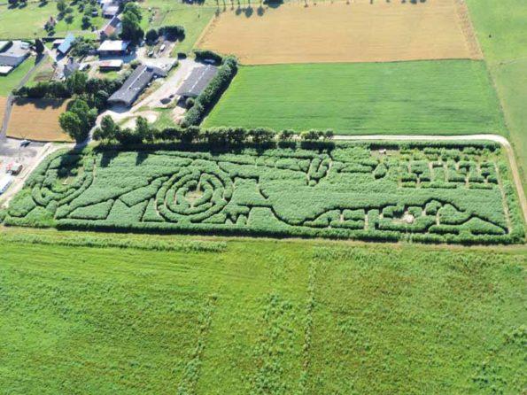 Les labyrinthes végétaux partout en France: Ma,che