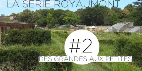 Carré : Deuxième épisode de la série sur le potager de l'Abbaye de Royaumont