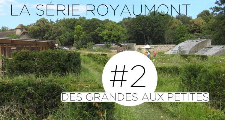 Deuxième épisode de la série sur le potager de l'Abbaye de Royaumont