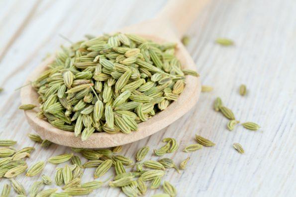 plante aromatique : Graines de fenouil