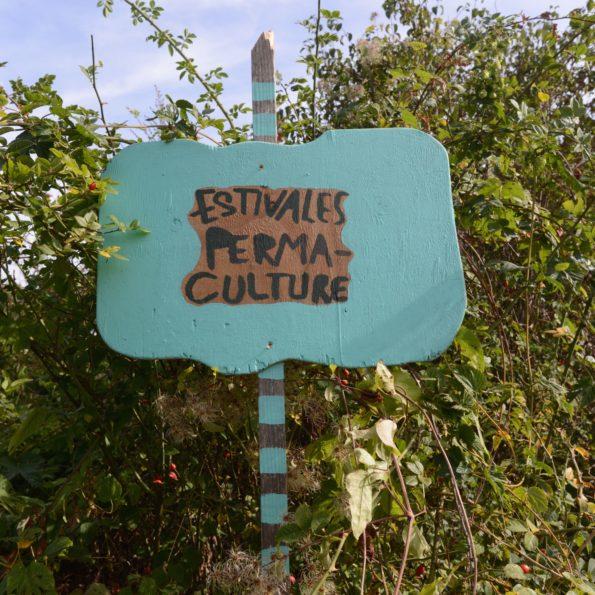 Murs à Pêches : Montreuil