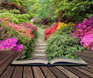 livre-jardin