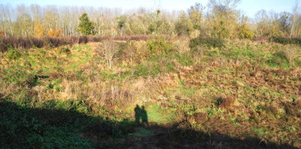 Challenge écologique 2011