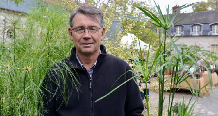 Philippe Courtoison - la Palmeraie zen - papyrus