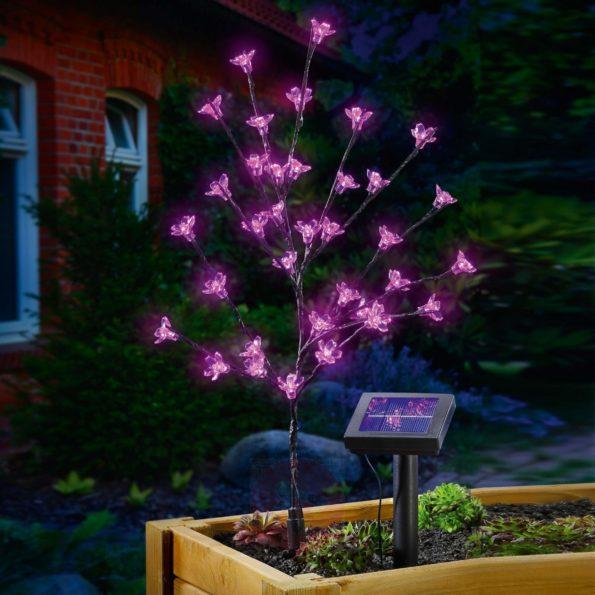 solaires bouquet lumineux