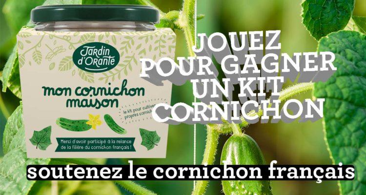du 3 au 9 juillet : concours cornichon français
