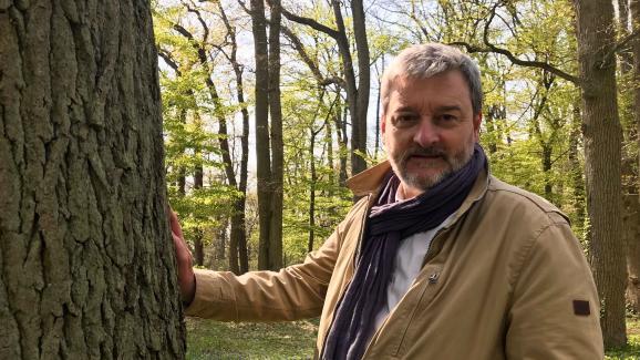 Pierre Nessmann