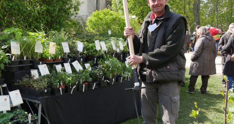 Arrache-tout - les jardins d'Ollivier