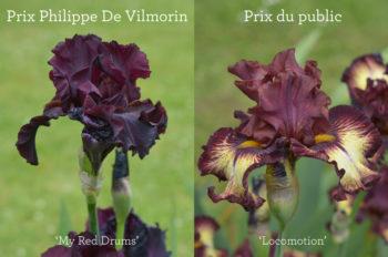 Parc Floral de Paris : le concours