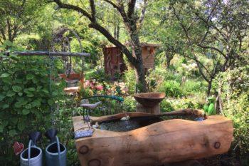Le jardin des Panrées : Bassin par Francis Cuny
