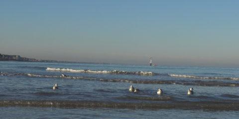 Houlgate - plage