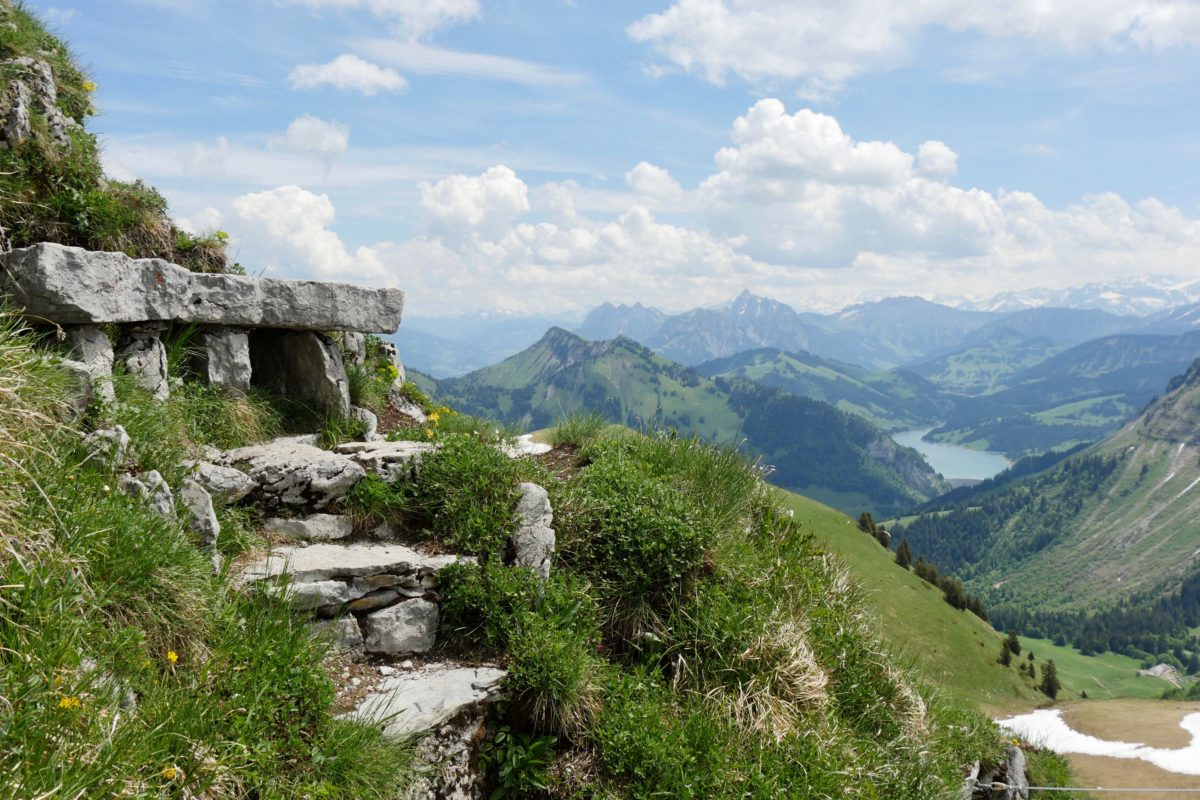 Le Jardin botanique de la Rambertia, en Suisse - Hortus Focus I mag