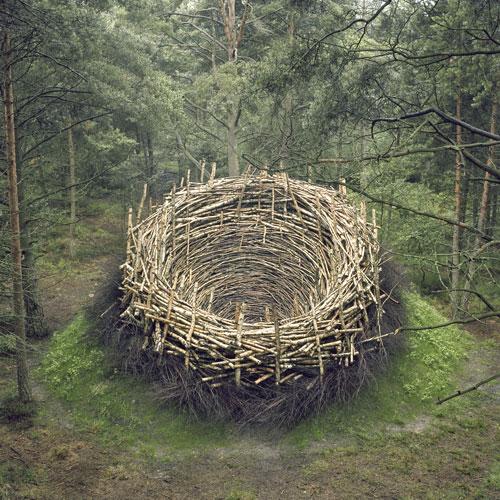 NILS-UDO : le nid