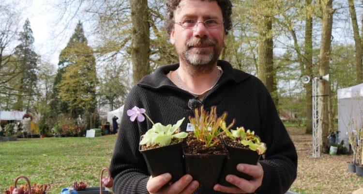 Les plantes carnivores de Mathieu Jehanne