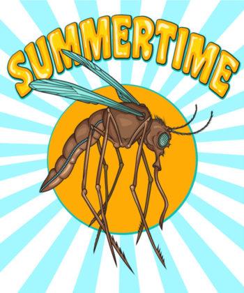 l'été, le temps des moustiques