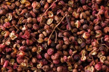 poivrier du Sichuan : Zanthoxyllum piperitum